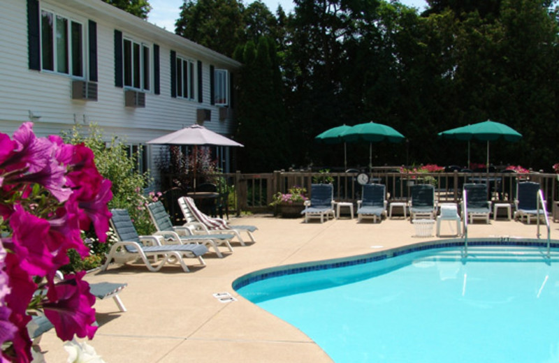 Outdoor Pool at the Village Green Lodge