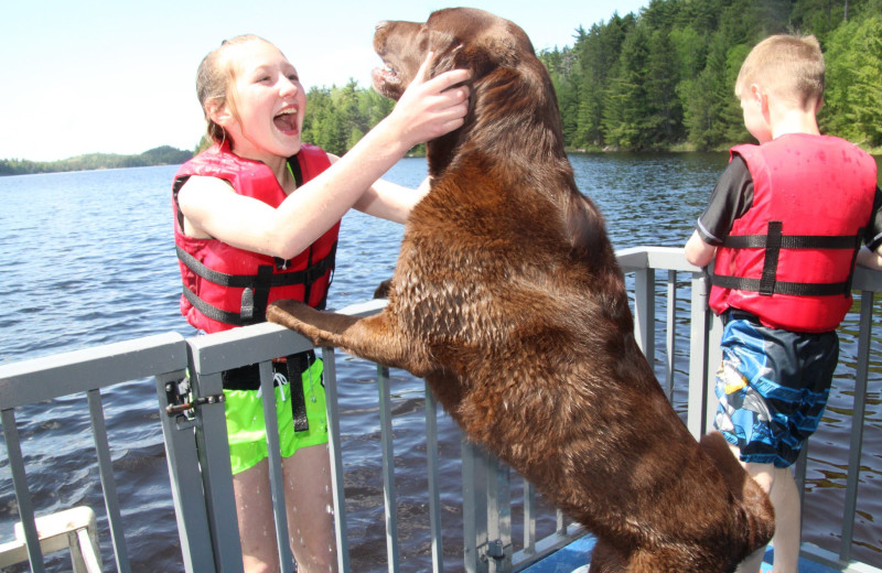 Pets welcome at Voyagaire Lodge and Houseboats.
