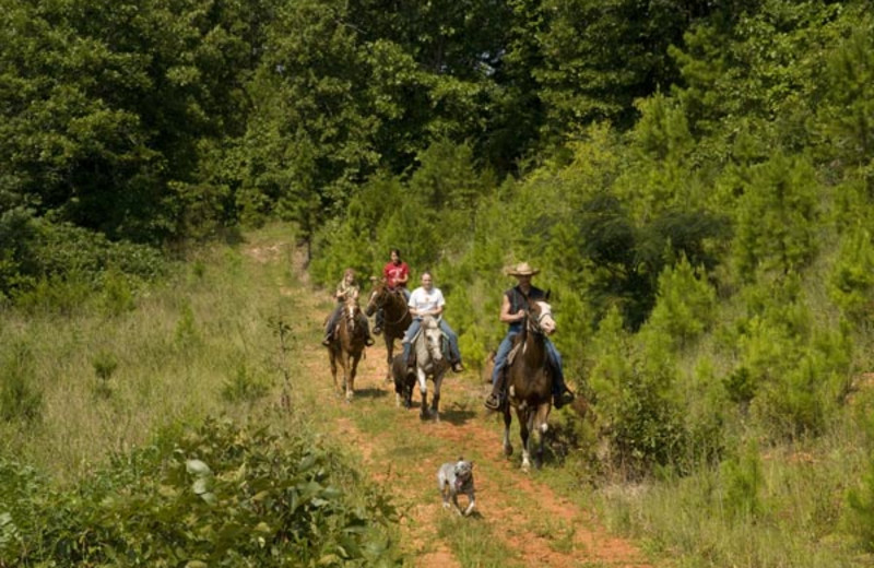 Horseback riding at Buffalo River Outfitters.