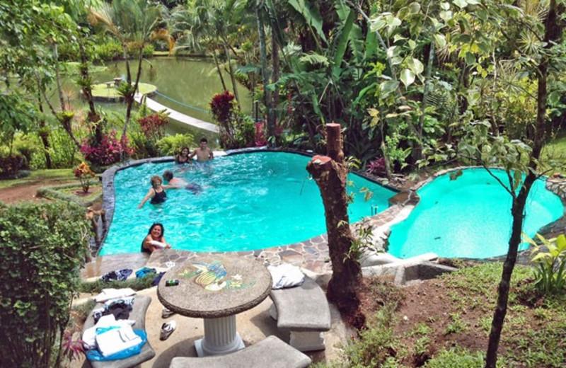 Outdoor pool at Villa Encantada.