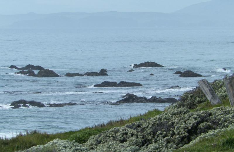 The beach at Sea Otter Inn.