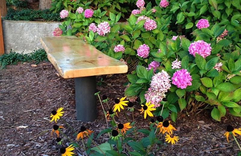 Garden bench at Sojourn Lakeside Resort.