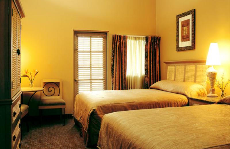 Guest room at Catalina Canyon Resort & Spa.