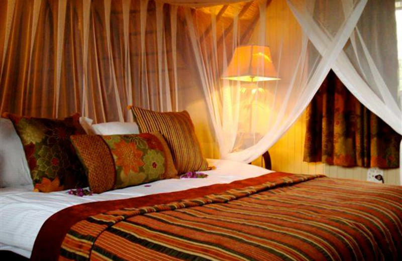 Guest room at Zongoene Lodge.