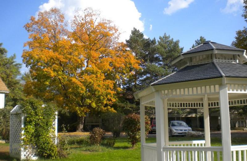 Outdoor gazebo at Parkwood Lodge.