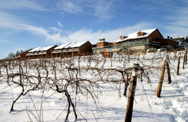 Inn at Glenora Wine Cellars in Winter