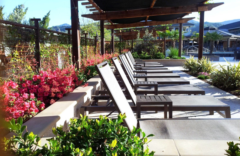 Poolside chairs at Calistoga Spa.