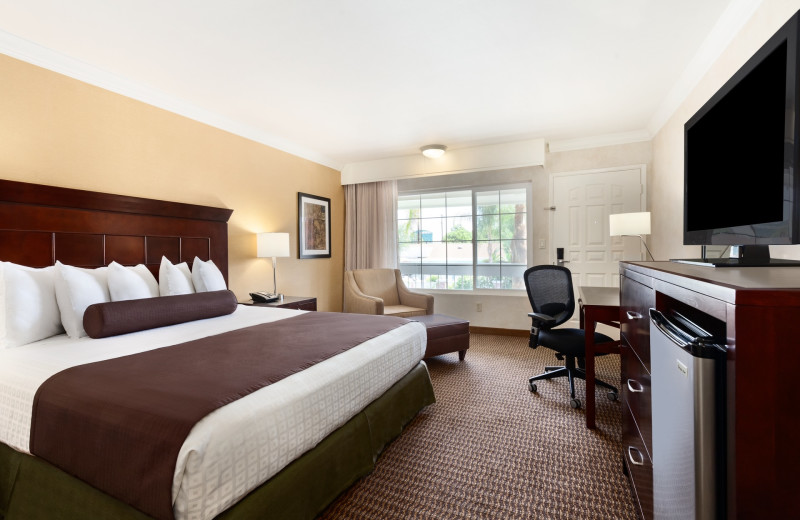 Guest room at Best Western Carriage Inn.