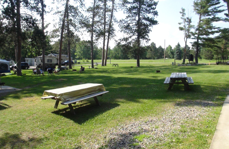 Campground at Moonlight Bay Resort.