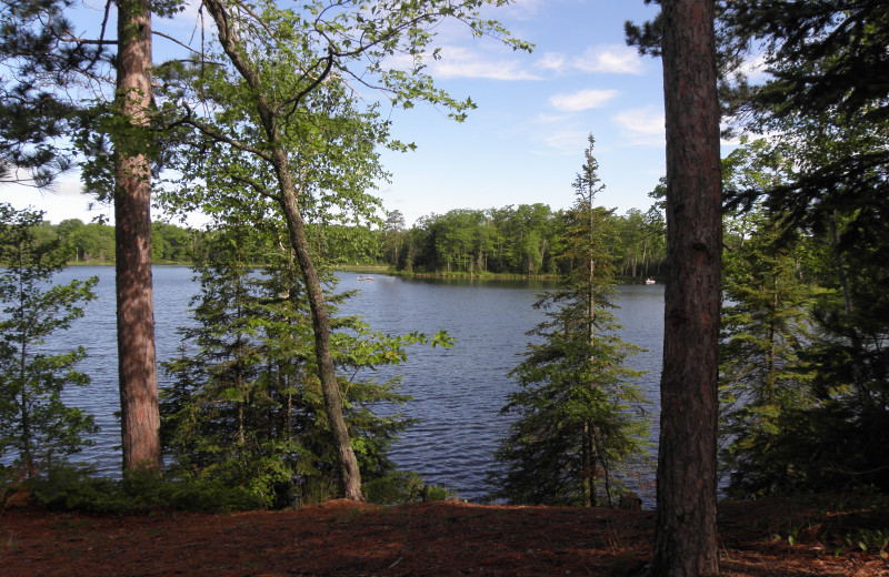 Lake view at Voss' Birchwood.