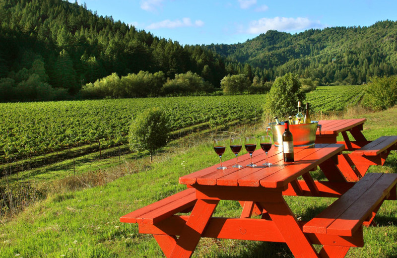 Picnic area at West Sonoma Inn and Spa.