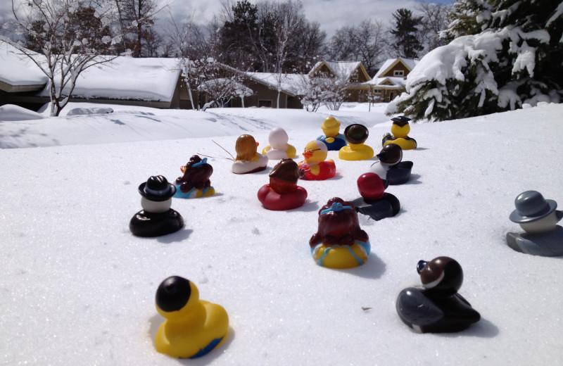 Winter time at Kavanaugh's Sylvan Lake Resort.