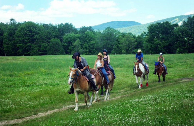 Yr. round horseback riding at Farm by the River Bed & Breakfast with Stables- open to the public -inn guests receive special rates.