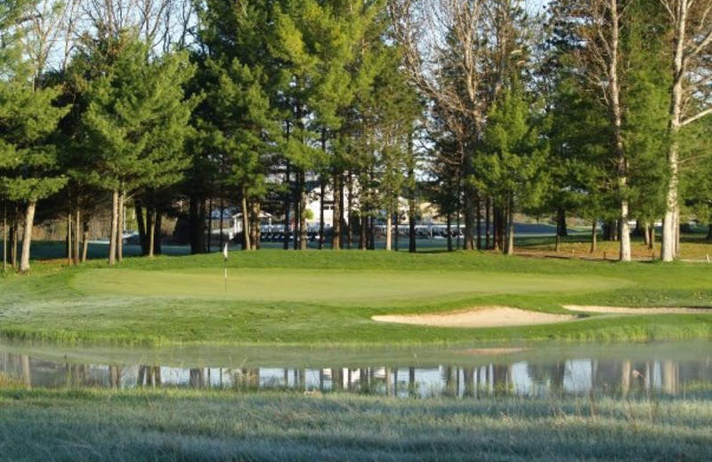 Golf greens at Manistee National Golf & Resort.