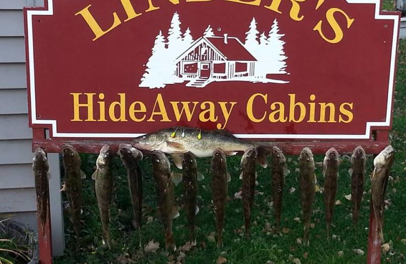 Fishing at Linder's HideAway Cabins.
