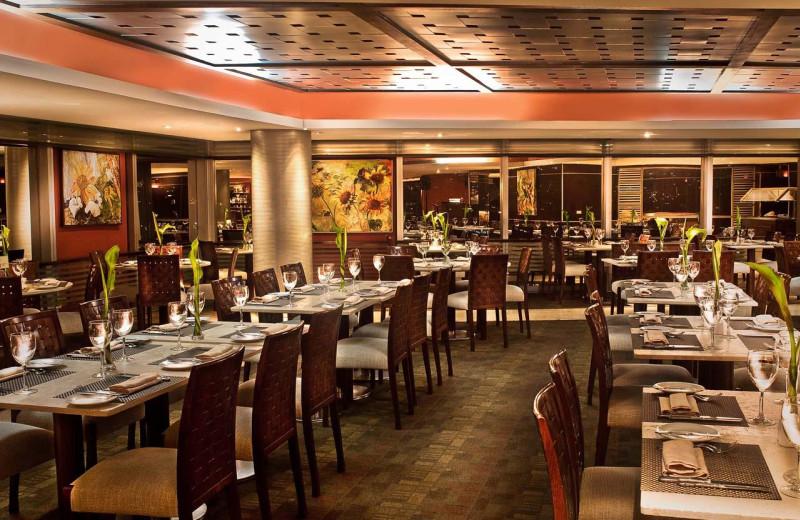 Dining at Hotel Centro Lido Regency.