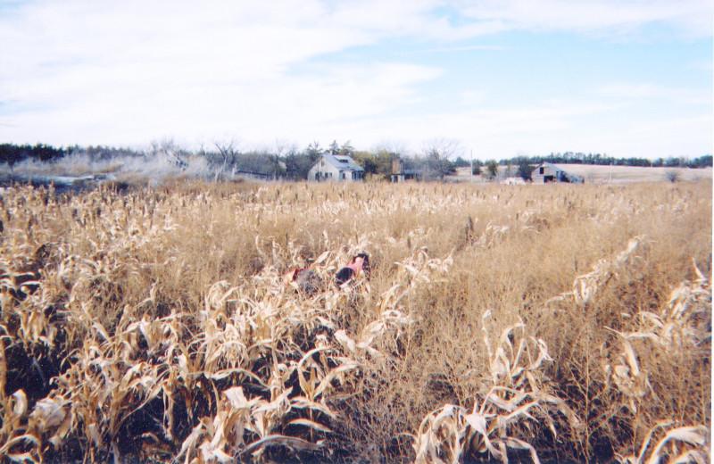 Field at Covert Creek Lodge.