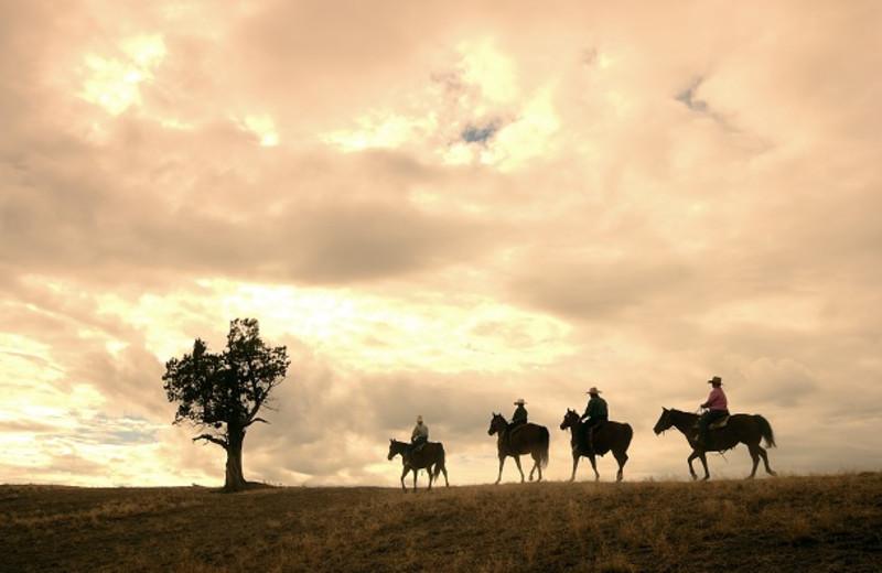 Trail Riding at Brasada Ranch