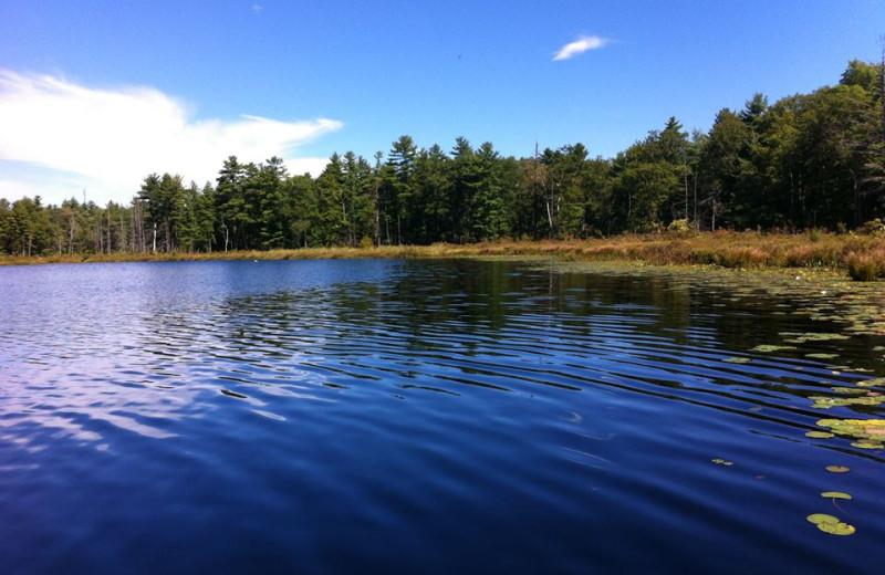 The lake at The Lodge at Woodloch.