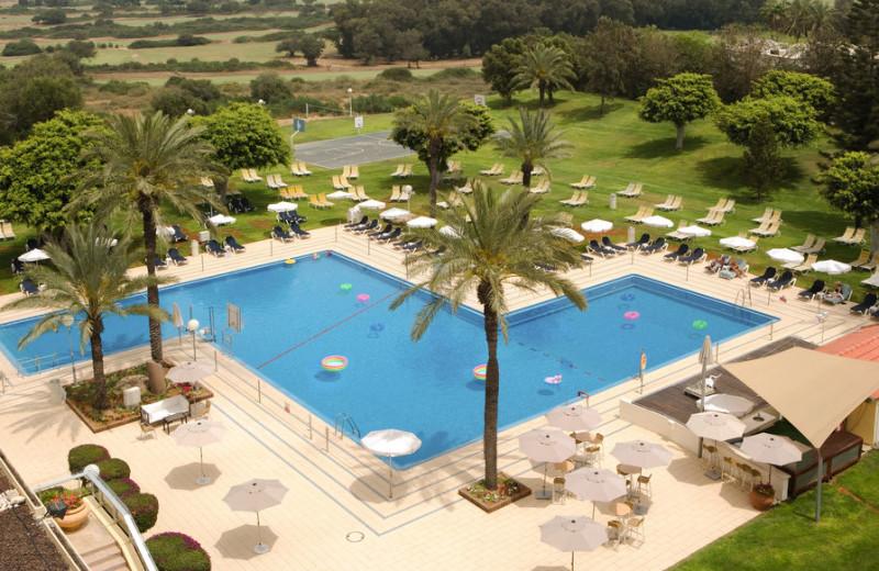 Outdoor pool at Dan Caesarea.