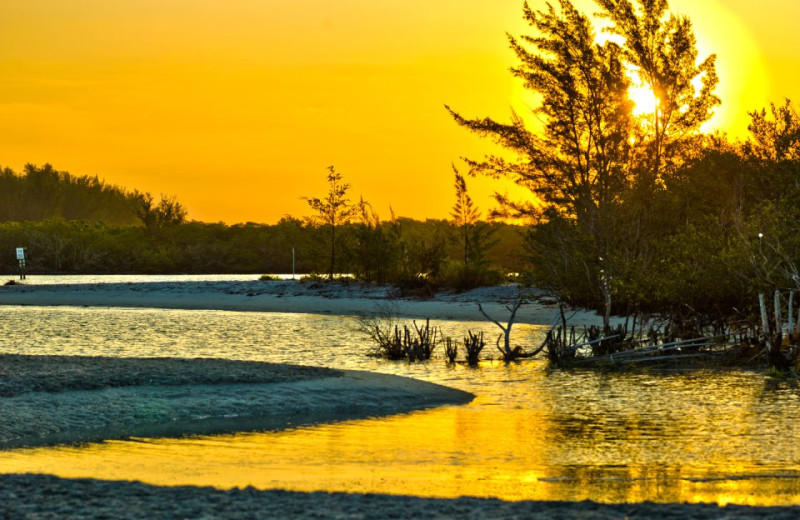 Sunset at Palm Island Resort.