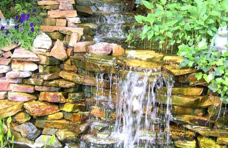 Waterfall garden at Black Forest Bed & Breakfast & Luxury Cabins.