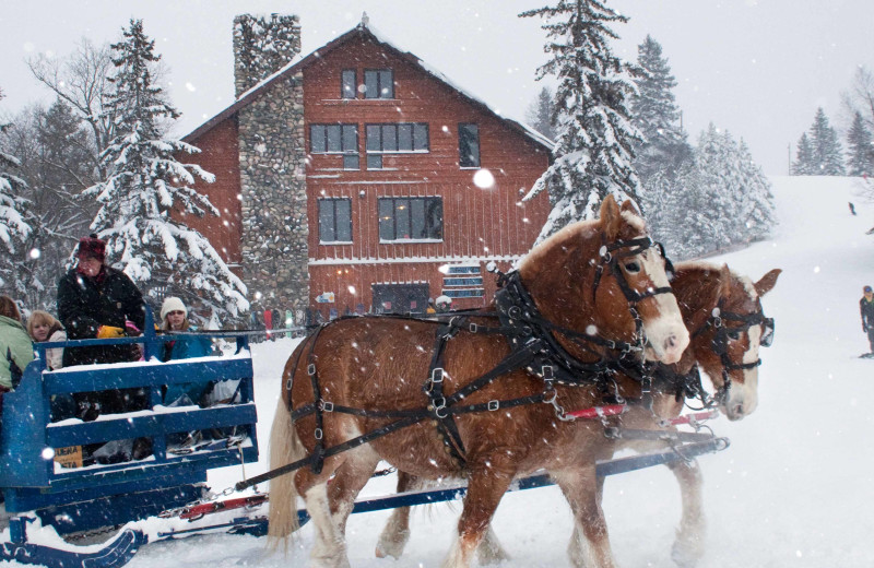 Sleigh ride at White Birch Resort.