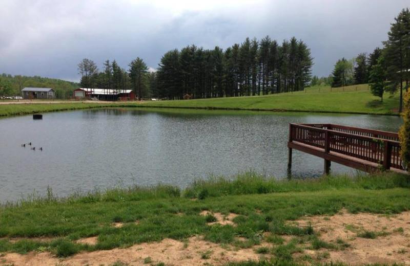 Pond view at Pine Lakes Lodge.