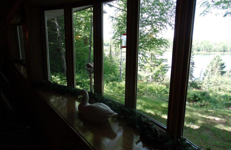 View from Buckhorn Resort.