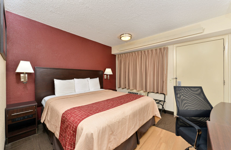 Guest room at Red Roof Inn - Benton Harbor.