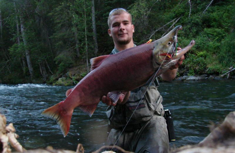 Salmon fishing at Gwin's Lodge & Kenai Peninsula Charter Booking Service.