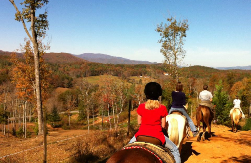 Horseback riding at Cabin Rentals of Georgia.