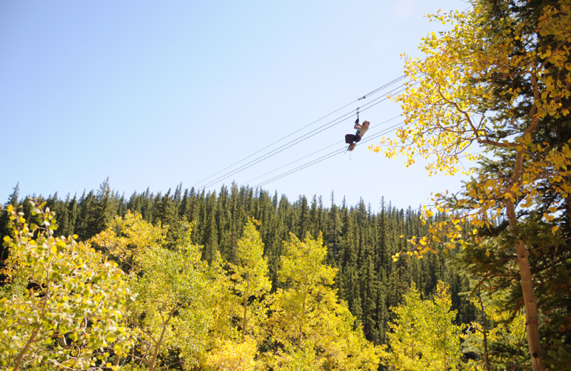 Zipline at Grand Timber Lodge.
