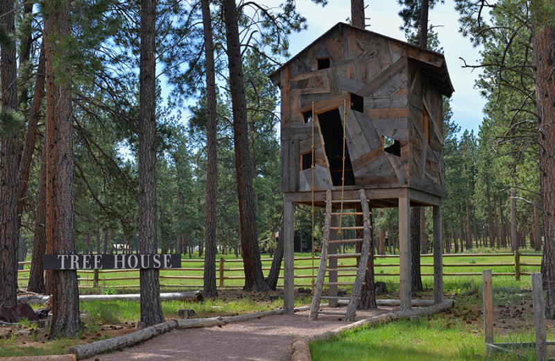 Treehouse at The Resort at Paws Up.