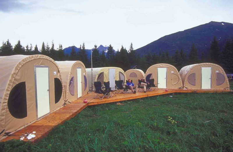 Bear camp tents at Great Alaska Adventure Lodge.