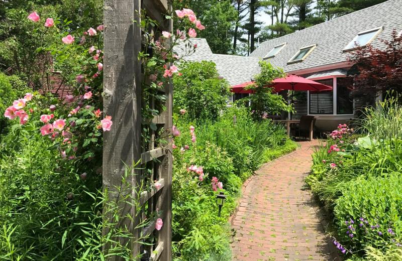 Garden at Morning Glory Inn.