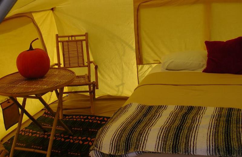 Tent bedroom at The Woods At Bear Creek Glamping Resort.