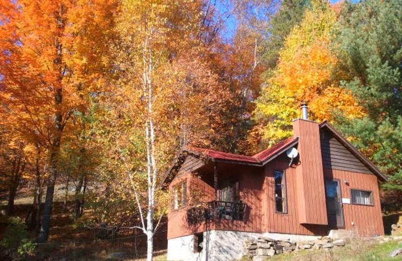 Cabin exterior at Lumina Resort.