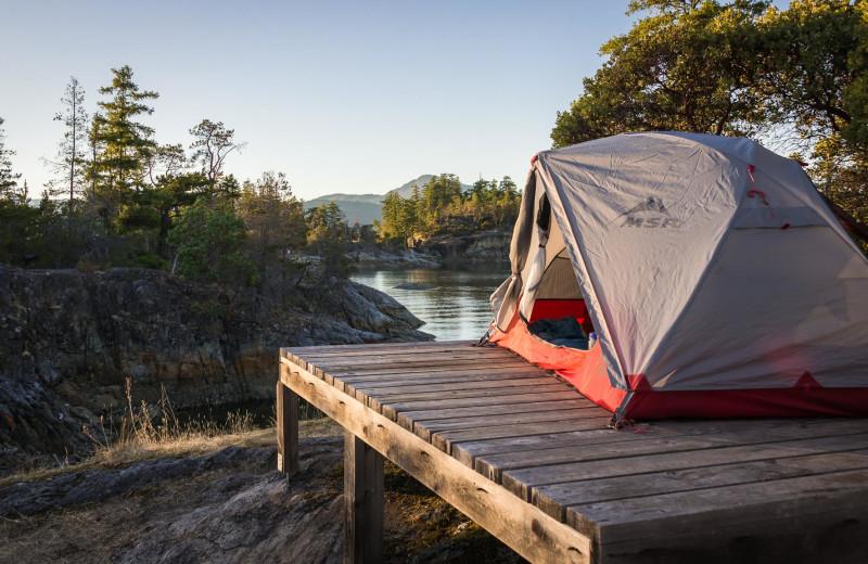 Tent at Orca Camp.