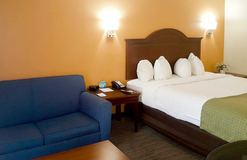 Guest room at Quality Inn & Suites Airport North.