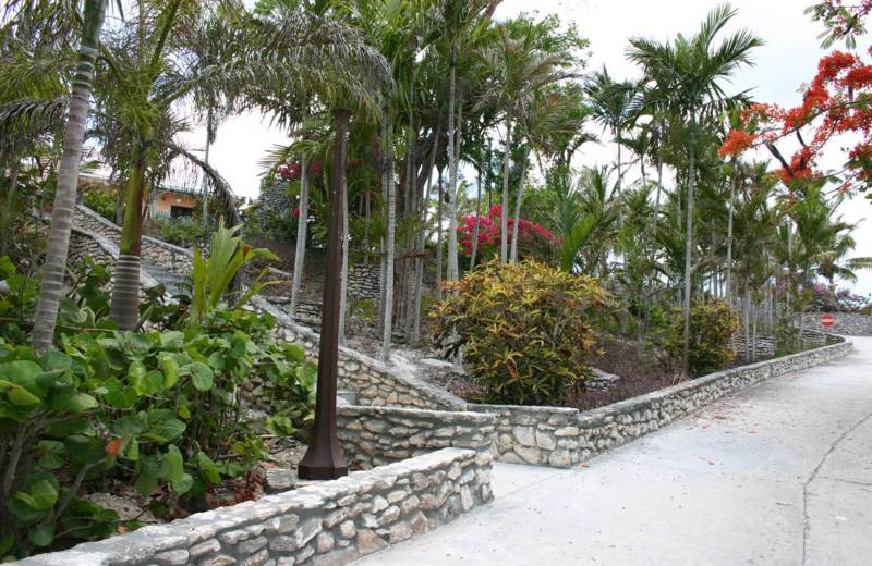 Scenic paths at Orange Hill Beach Inn.