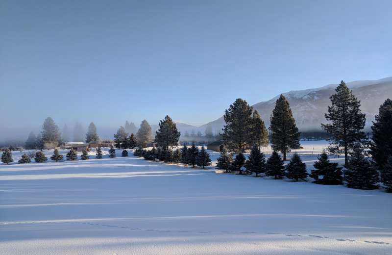 Winter landscape at Kandahar Lodge.