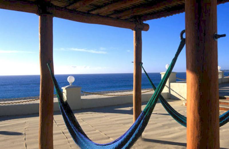 Beach Hammocks Near Hola Grand Faro Los Cabos