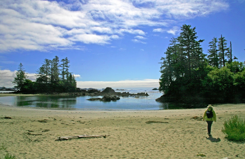The beach at Clayoquot Wilderness Resort.