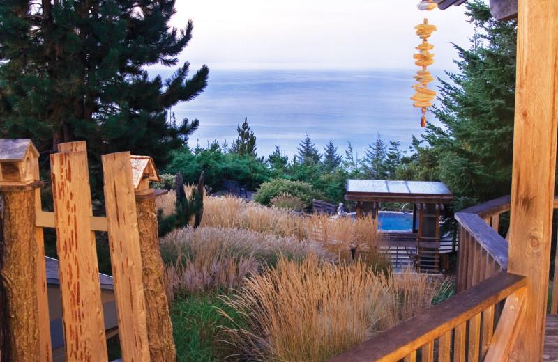 Exterior view of WildSpring Guest Habitat.