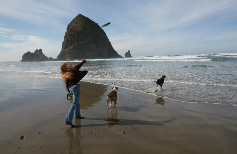 Pet friendly accommodations at Hallmark Resort in Cannon Beach.
