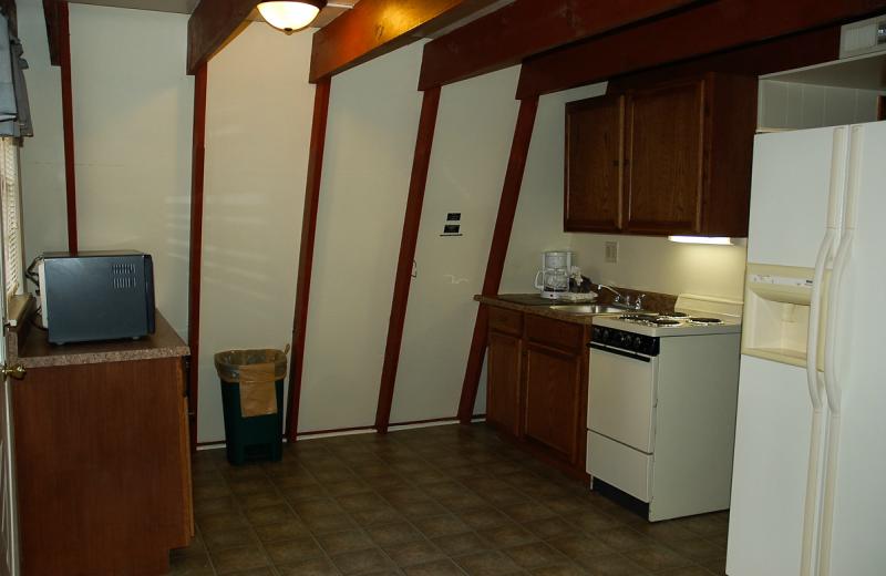 Cabin kitchen at Alpine Lodge Resort.