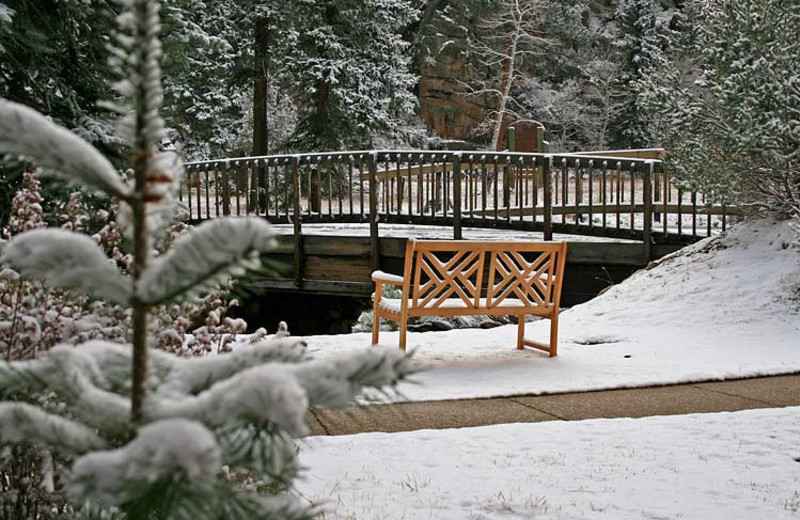 Winter time at Woodlands On Fall River.