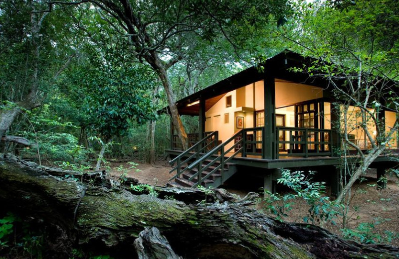 Exterior view of Phinda Private Game Reserve.