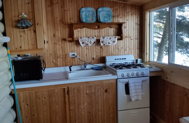 Cabin kitchen at Spooky Bay Resort.
